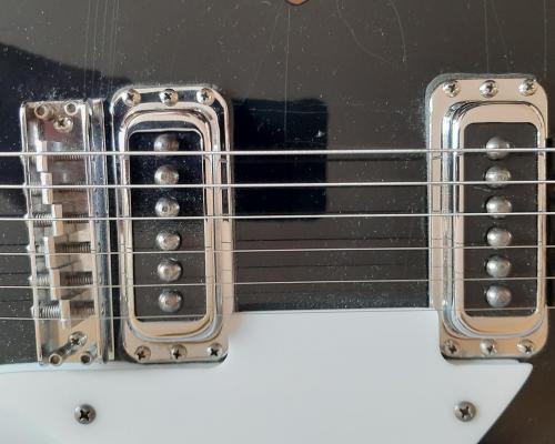 Rickenbacker 330 (3) (Copy)