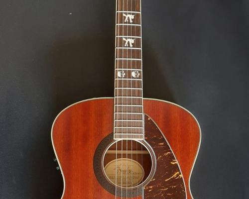 Fender Tim Armstrong (Copy)